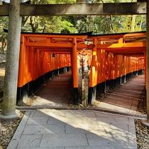 京都人気の観光スポットー伏見稲荷大社